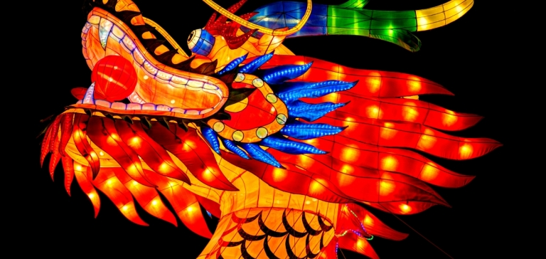 dragon_portrait_chinalights_(2)_1200_570_c1.jpg